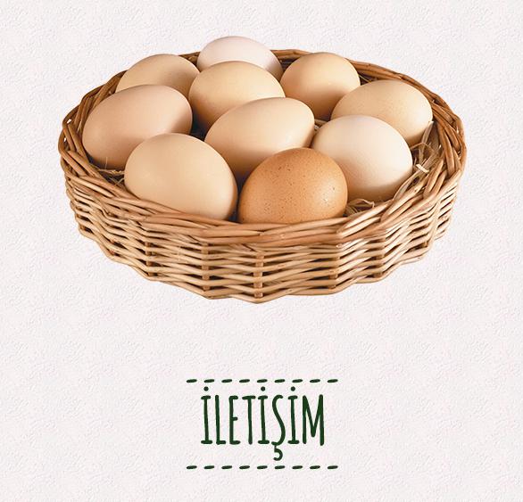 ekremtetikciftligi-beyaz-yumurta-hover