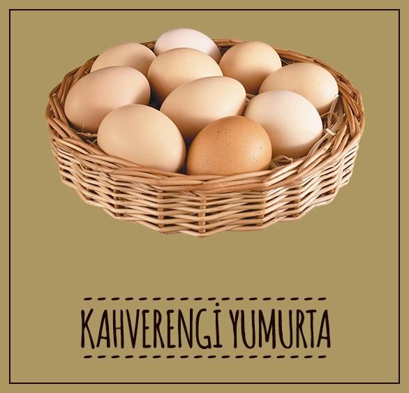 ekremtetikciftligi-kahverengi-yumurta